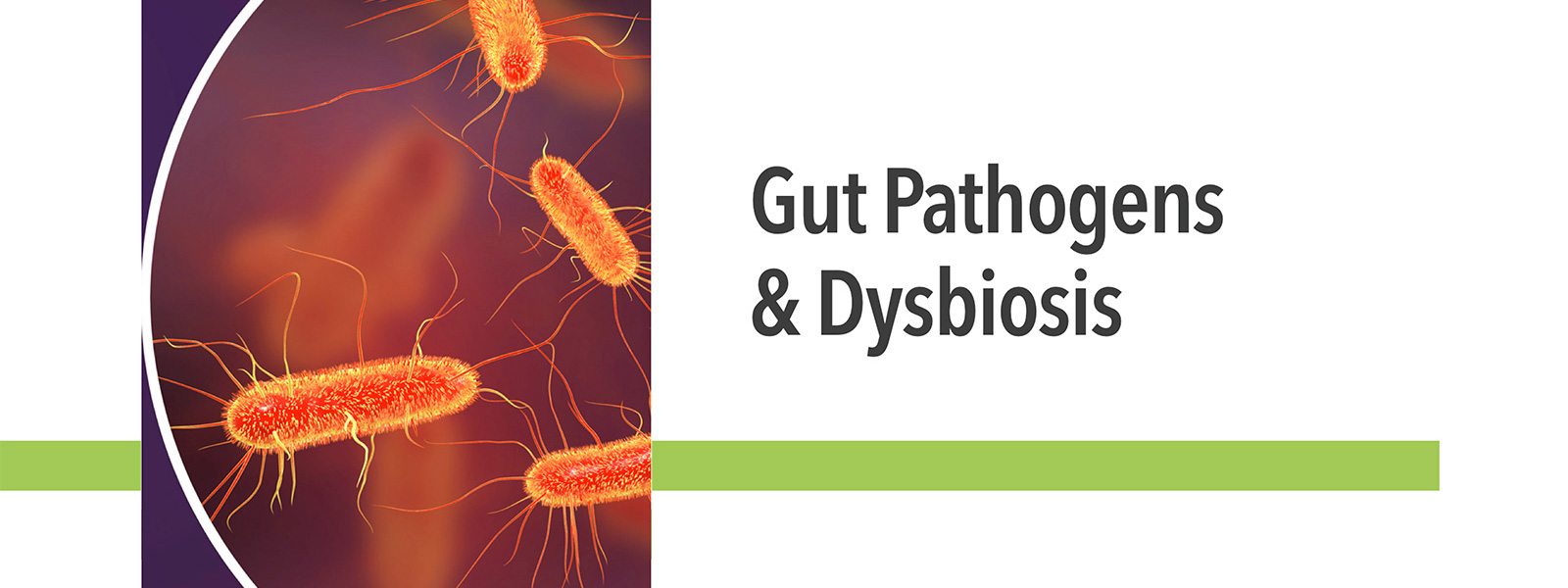 Gut Pathogens and Dysbiosis Course